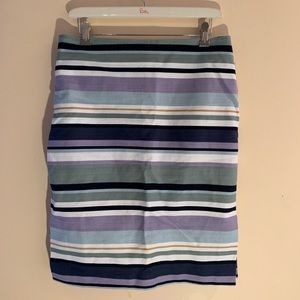 Multi Colored Stripped Skirt